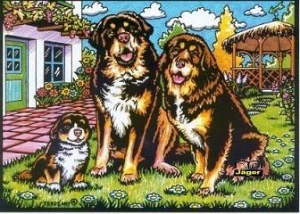 Samtbild Drei Hunde Vor Haus