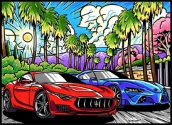 Samtbild Miami Cars