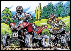 Samtbild Cross Rallye II- Quads